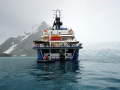 Jan2020_PointWild_Antarctic-166