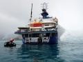 Jan2020_PointWild_Antarctic-167