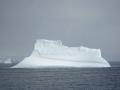 Jan2020_PointWild_Antarctic-189