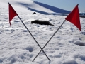 Jan2020_PortalPoint_Antarctic-012