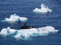 Jan2020_PortalPoint_Antarctic-036
