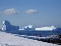 Jan2020_PortalPoint_Antarctic-038