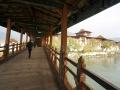 PunakhaDzong-2019-060