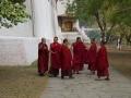 PunakhaDzong-2019-111