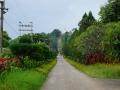bicycletour Khaung Daing Oct_2017 -053