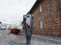 Jan2020_Falkland_Stanley-007