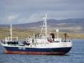 Jan2020_Falkland_Stanley-040