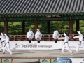 Taekwondo_Seoul2018-007