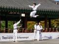 Taekwondo_Seoul2018-016