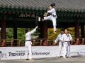 Taekwondo_Seoul2018-019