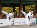Taekwondo_Seoul2018-022