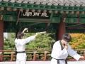 Taekwondo_Seoul2018-026