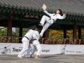 Taekwondo_Seoul2018-040