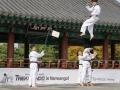 Taekwondo_Seoul2018-066