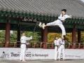 Taekwondo_Seoul2018-067