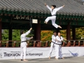 Taekwondo_Seoul2018-015