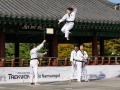 Taekwondo_Seoul2018-017