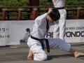 Taekwondo_Seoul2018-025