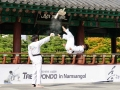 Taekwondo_Seoul2018-027
