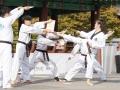 Taekwondo_Seoul2018-043