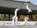 Taekwondo_Seoul2018-047