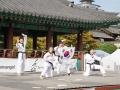 Taekwondo_Seoul2018-057