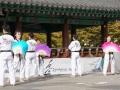 Taekwondo_Seoul2018-058