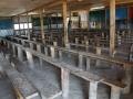 TshangkhaSchool-2019-058