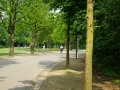 Vondelpark_Amsterdam_May2018_-045