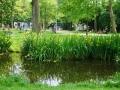Vondelpark_Amsterdam_May2018_-047