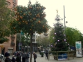 Weihnachtsflair Barcelona 2014 - 001